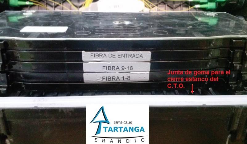 CTO Movistar_7